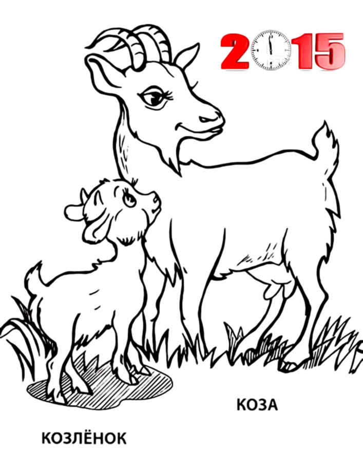 sheep and goats coloring pages - photo#9