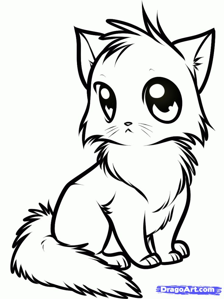 anime animals coloring pages - Coloring Pages Cartoon Animals