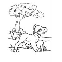 Disney lion king coloring pages