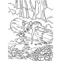 Bambi coloring pages