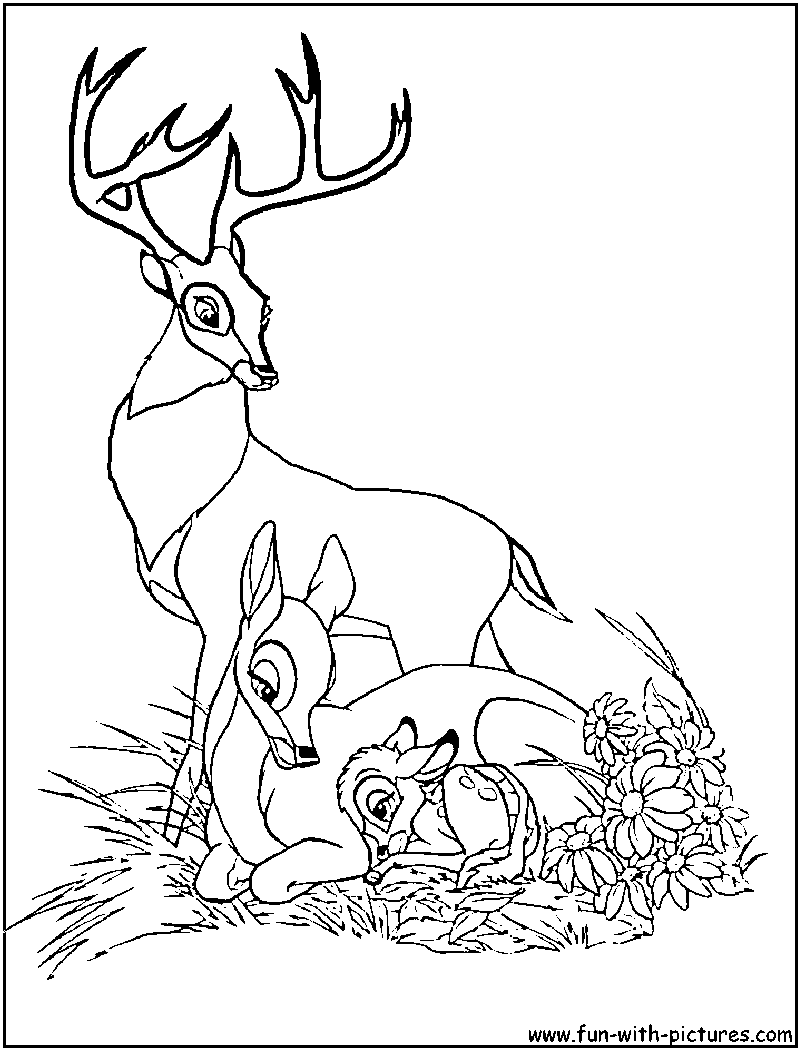 Colouring pages holi - Bambi And Friends Coloring Pages
