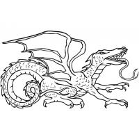 Dragon coloring pages for adults