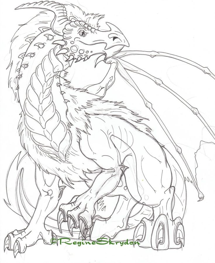 dragon coloring pages for adults - Dragon Coloring Pages For Adults