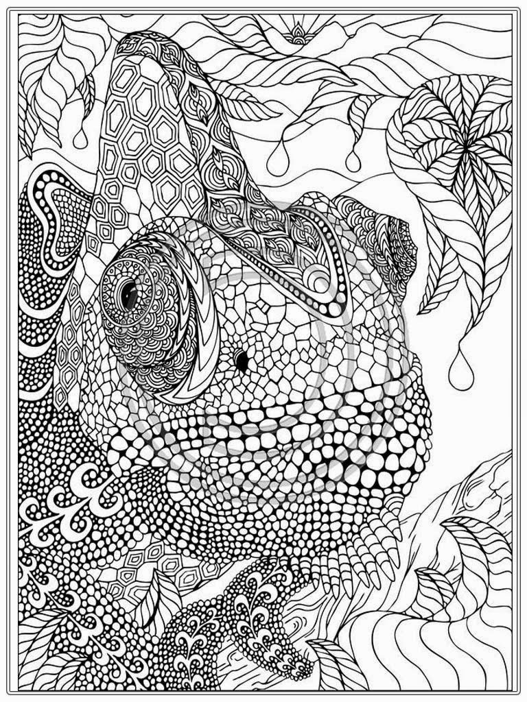 Free Adult Printable Coloring Pages Coloring Pages To Print