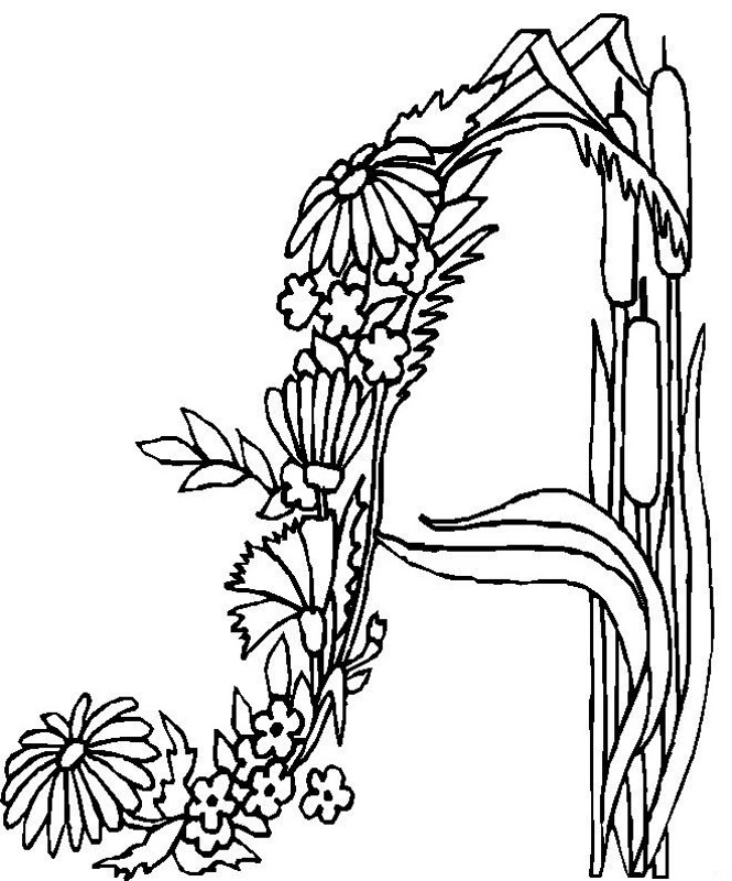 alphabet flower coloring pages - A Coloring Pages