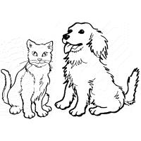 Cat and dog coloring pages