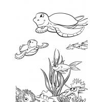 Sea turtle coloring pages