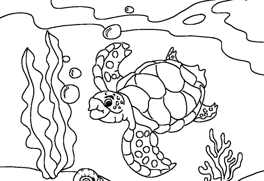 Nice Sea Turtle Coloring Pages