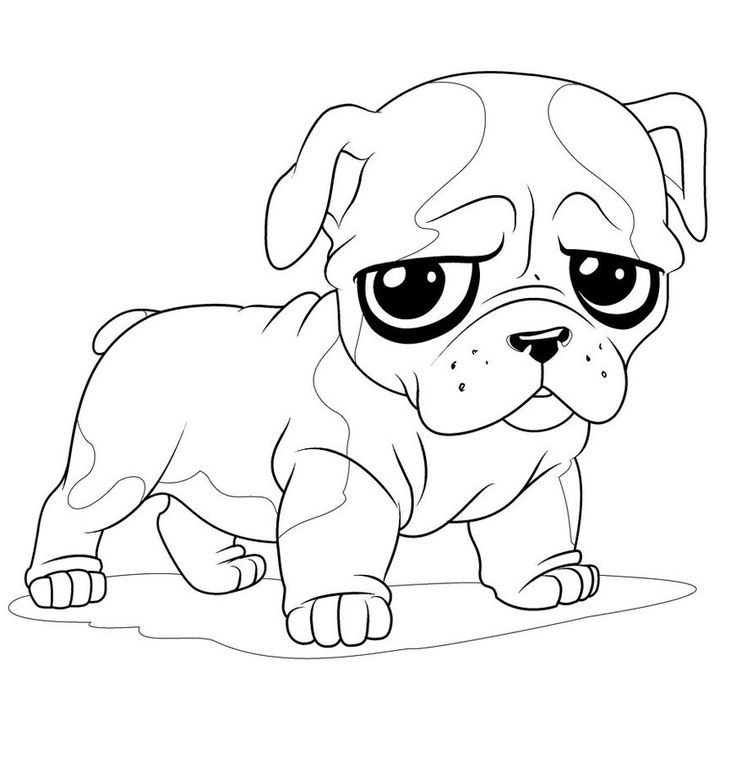 Captivating Pug Coloring Pages