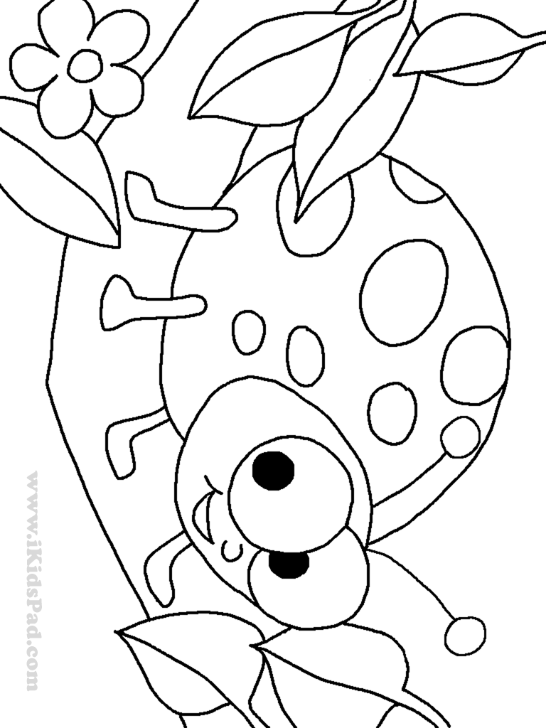 Cute Insect Coloring Pages Printable