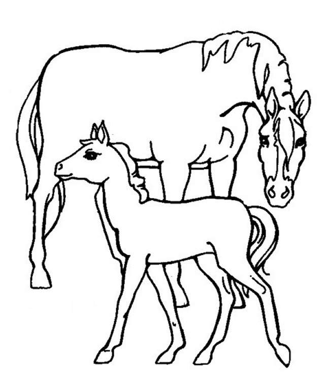 farm animal coloring pages - Animal Coloring Pages Printable 2