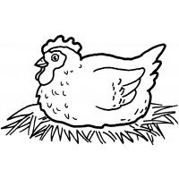 Chicken coloring pages