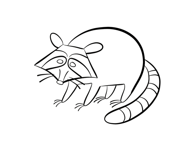 raccoon coloring pages printable worksheet coloring pages