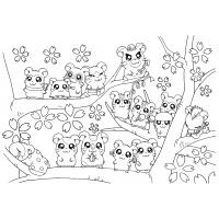 Hamster coloring pages