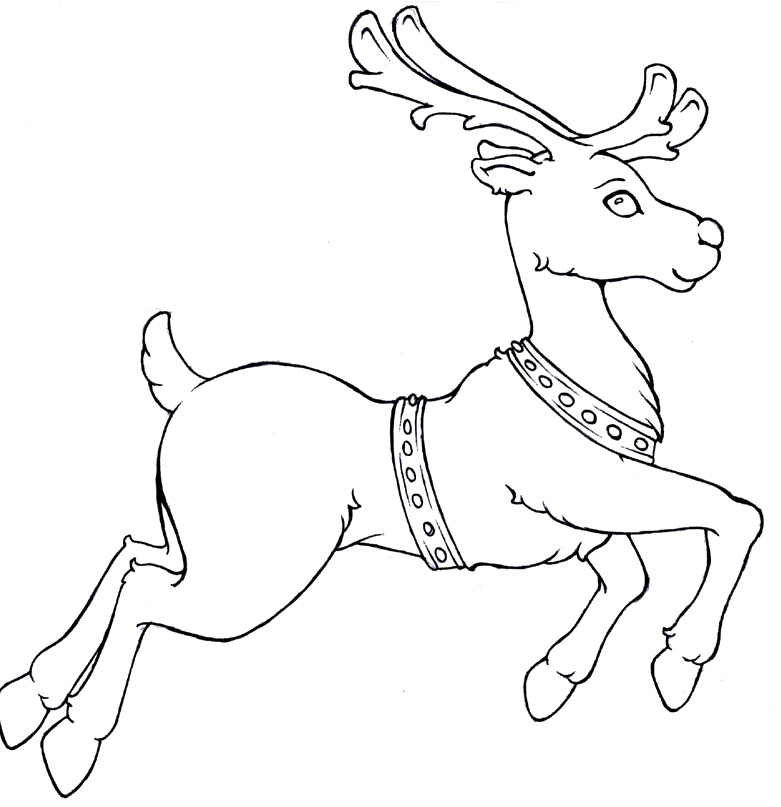 Reindeer coloring pages to download and print for free