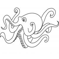 Octopus coloring pages