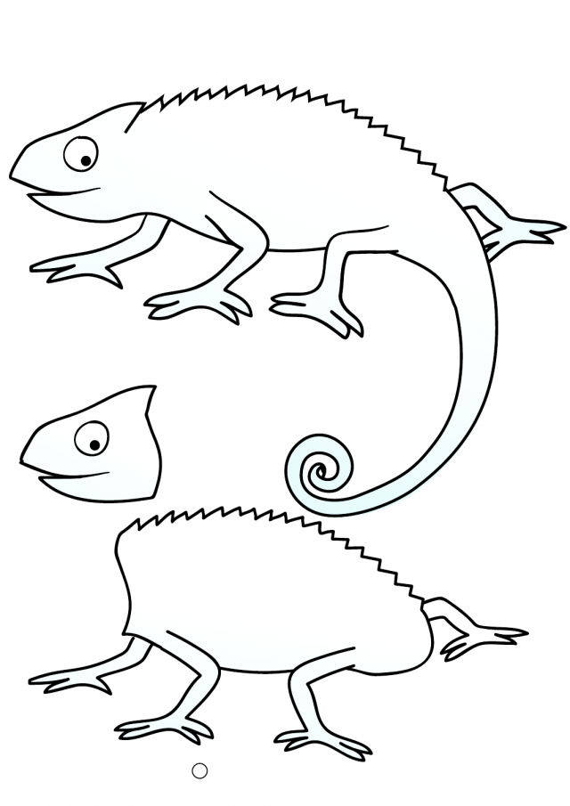 Chameleon Coloring Pages to download and print for free