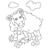 Ram coloring pages