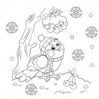 Bullfinch coloring pages