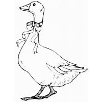 Goose coloring pages