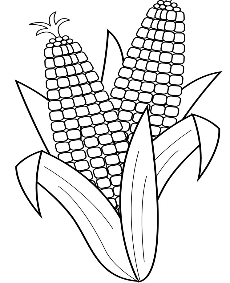Corn coloring pages to download and print for free