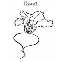 Beetroot coloring pages