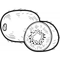 Kiwi coloring pages