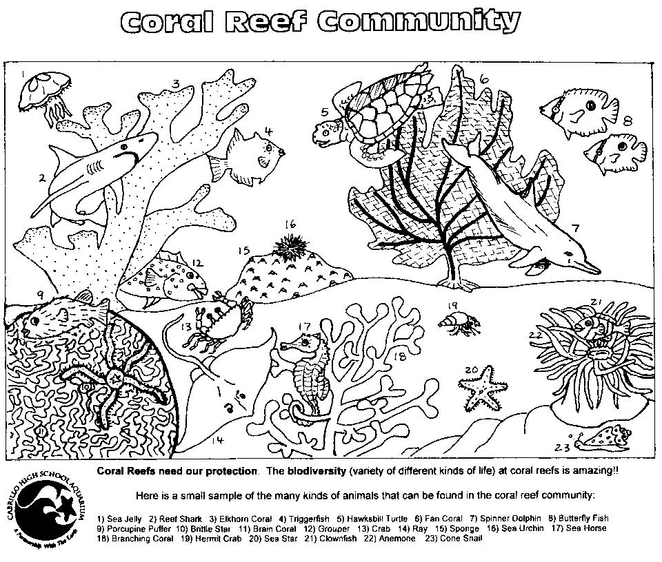 Coral Reef Coloring Pages To Download And Print For Free