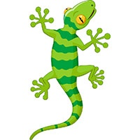 Gecko coloring pages