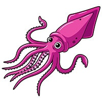 Squid coloring pages