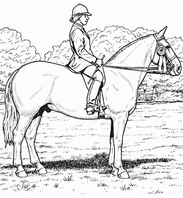 Elegant Realistic Horse Coloring Pages