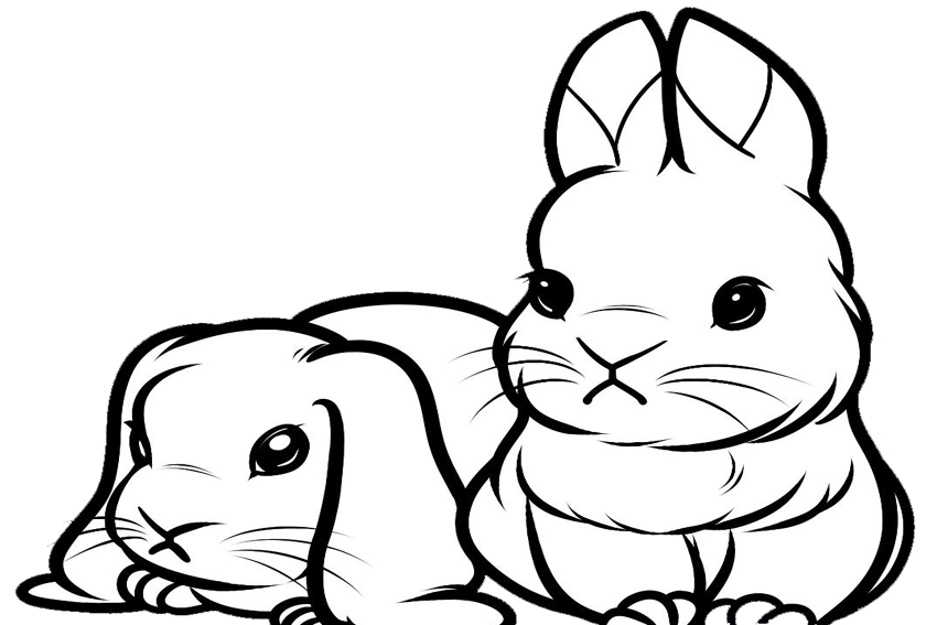 bunnies bunny coloring pages | Cute bunny coloring pages to download and print for free