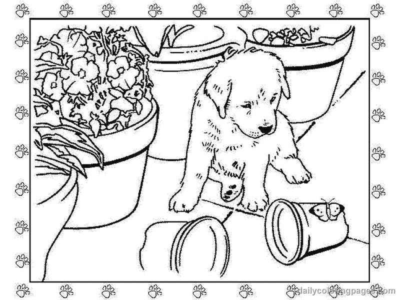 coloring pages of puppies cute coloring pages pet patrol