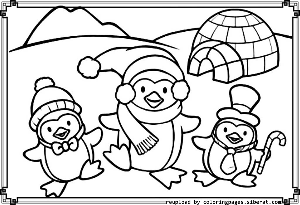 Cute Penguin Coloring Pages Download And Print For Free