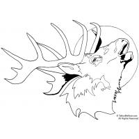 Bull elk coloring pages