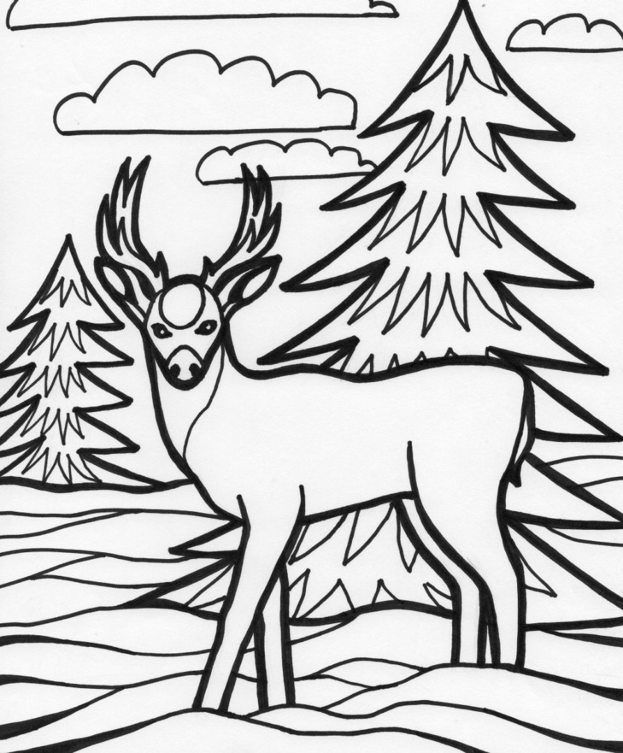 Deer coloring pages to download and print for free