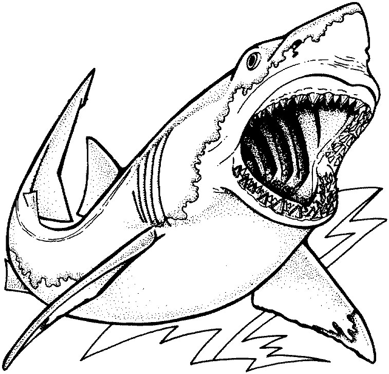 Shark Coloring Pages To Download And Print For Free