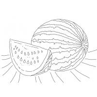 Watermelon coloring pages