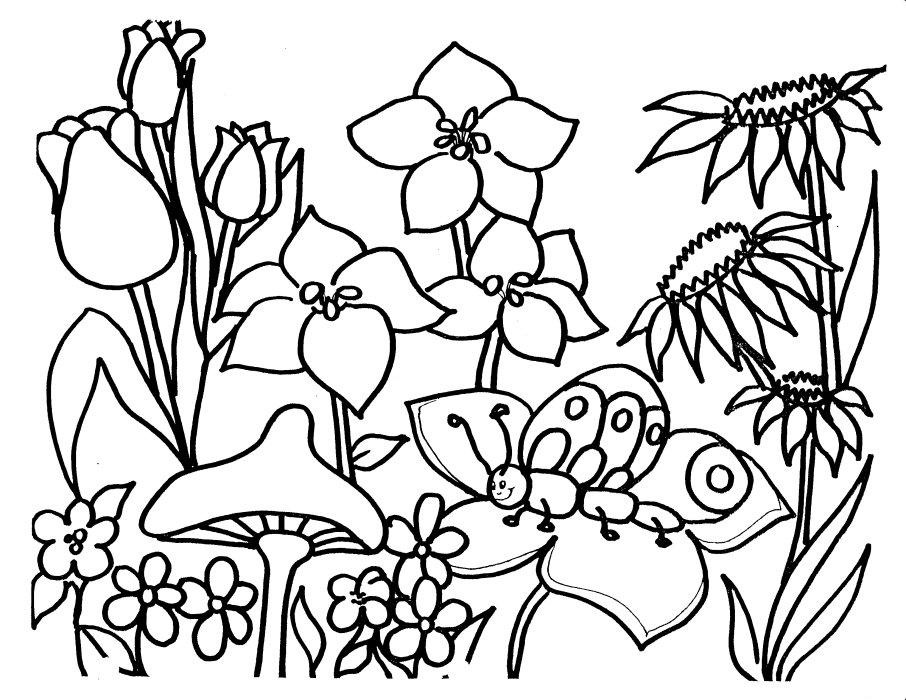 Spring flower coloring pages to download and print for free spring flower coloring pages mightylinksfo