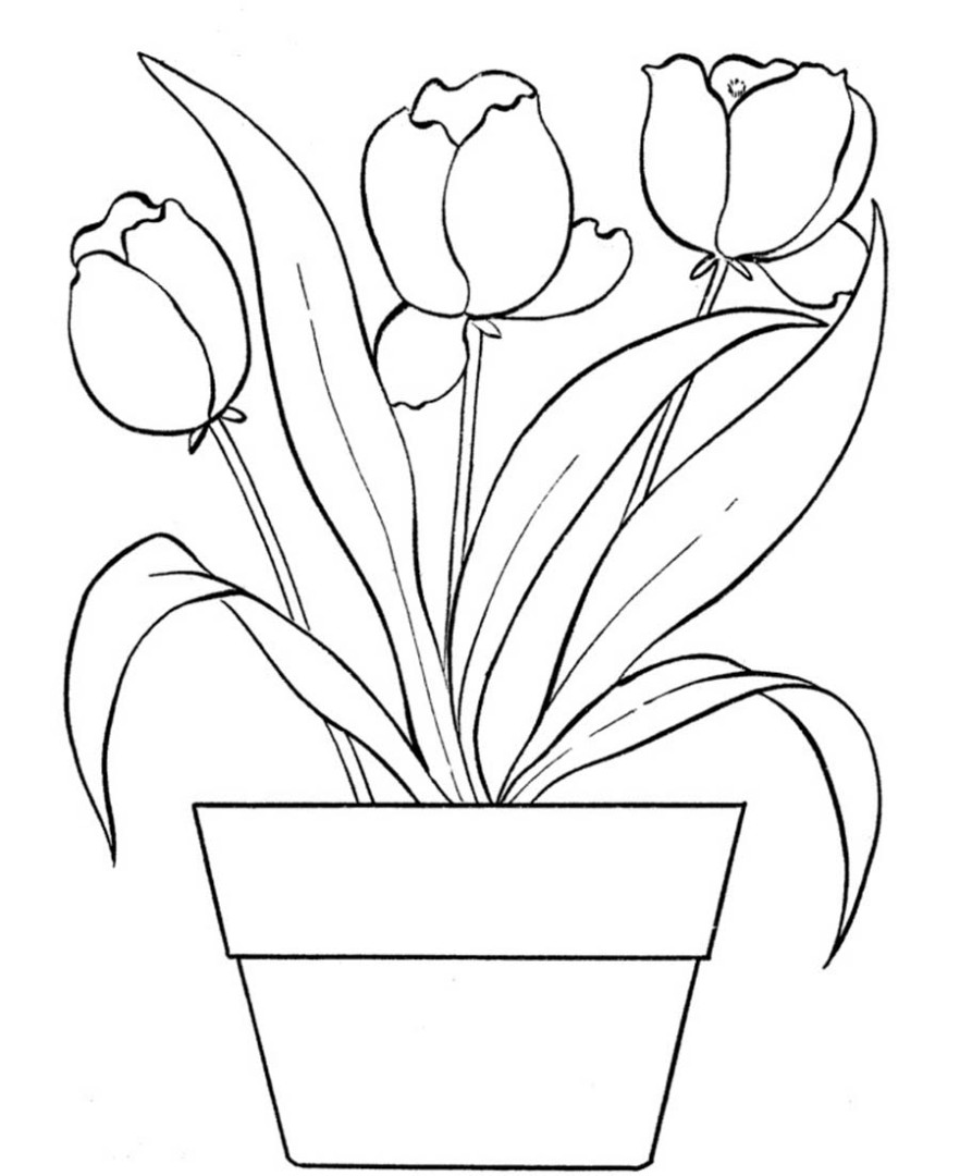 Fantastic Tulip Coloring Pages Motif - Coloring Paper ...