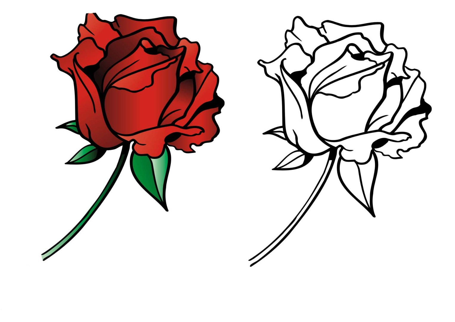 Roses coloring pages to download and print for free